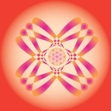 Free Flower Of Life Seed  Mandala Stock Photography - 28462212