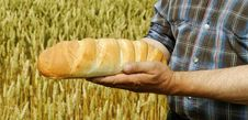 Free Man With Bread. Royalty Free Stock Photos - 28468528