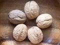 Free Walnuts Stock Image - 28476561