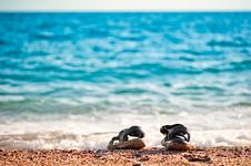 Beach Shoes At The Edge Royalty Free Stock Photo