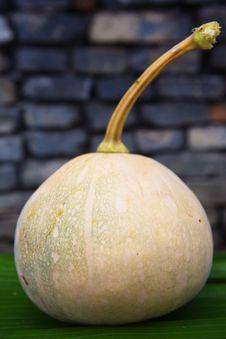 Free Pumpkin Stock Photo - 28476410