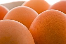 Free Brown Raw Eggs Royalty Free Stock Photography - 28477317