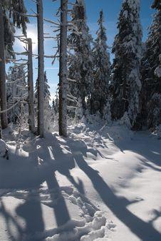 Free Winter Landscape Stock Images - 28477674