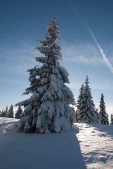 Free Winter Landscape Royalty Free Stock Photos - 28477748