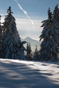 Free Winter Landscape Stock Images - 28477774