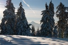 Free Winter Landscape Royalty Free Stock Photography - 28477797