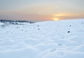 Free Snow Field At Sunset Stock Photo - 28480280