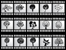Free Film Strip With Trees Stock Images - 28482654