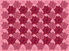 Free Pattern From Roses Stock Photo - 28487070