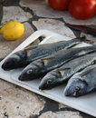 Free Prepared Marine Fish For Barbecue On The Open Fire Place Stock Image - 28492691