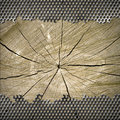 Free Perforated Metal Background Stock Photography - 28495502