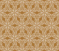 Free Terracotta Vintage Fabric, Seamless Vector Pattern Royalty Free Stock Photo - 28497685