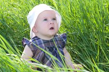 Free Child On Grass Stock Images - 28495544
