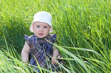 Free Child On Grass Royalty Free Stock Images - 28495549