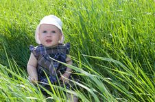 Free Child On Grass Royalty Free Stock Photos - 28495558