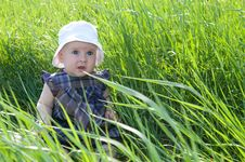 Free Child On Grass Stock Photography - 28495572