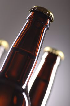 Free Beer Bottles Royalty Free Stock Photos - 2850388
