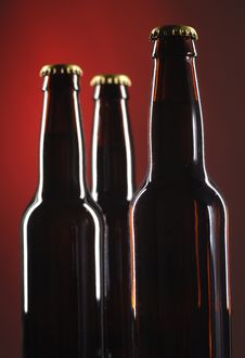 Free Beer Bottles Royalty Free Stock Photography - 2850407