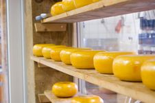 Free Dutch Cheeses Royalty Free Stock Image - 2851296
