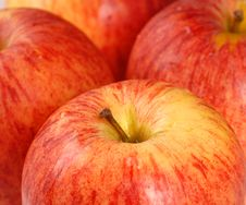 Free Closeup Of Four Gala Apples Stock Image - 2851361