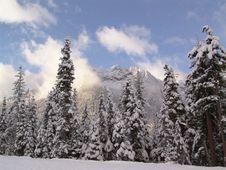 Fresh Mountain Snow Stock Images