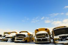 Free School Buses At A Junk Yard Royalty Free Stock Photo - 2853115