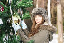 Free Christmas Tree Royalty Free Stock Photo - 28503755