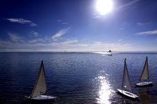 Free White Sailboats Royalty Free Stock Photo - 28504285