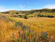 Free Weka Pass Valley, North Canterbury New Zealand Stock Photo - 28505120