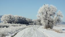 Free Winter Frost On A Backroad Stock Photo - 28506320