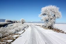 Free Country Road And Winter Frost Royalty Free Stock Photos - 28506538