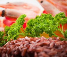 Free Shrimp With Rice And Fresh Green Parsley Royalty Free Stock Image - 28510576