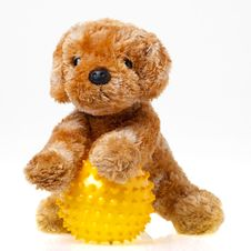 Free Toy Dog Royalty Free Stock Photo - 28511415