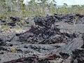 Free Kilauea Volcano,lava Flow Of 1974 On Big Island, Hawaii Stock Images - 28524824