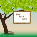 Free Banner On A Tree Branch Royalty Free Stock Photos - 28539578