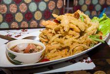 Free Fried Papaya Pok Pok Stock Photos - 28532843