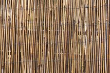 Free Bamboo Stock Photography - 28533032