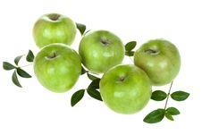 Free Apple Stock Photos - 28534953