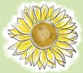 Free Flower Sunflower Painted Watercolor Royalty Free Stock Photo - 28544595