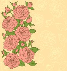 Flowers, Leaves And Buds Pink Roses. Painted In The Old Style. Suitable Background For Text And Postcards Royalty Free Stock Image