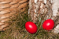 Free Easter Eggs Stock Photography - 28554232