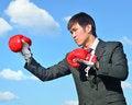Free Boxer Businessman Ready To Fight Royalty Free Stock Photos - 28562308