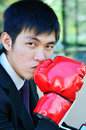 Free Boxer Businessman Ready To Fight Royalty Free Stock Image - 28562316