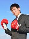 Free Boxer Businessman Ready To Fight Stock Photo - 28562320
