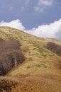 Free On The Ridge To The Hut Echo, Мountain Stara Planina, Bulgaria Stock Photo - 28563280
