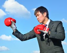 Free Boxer Businessman Ready To Fight Royalty Free Stock Photos - 28562308