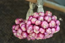 Free Group Of Shallots Stock Photo - 28562330