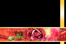 Free Valentine Rose Frame Royalty Free Stock Images - 28572609