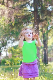 Little Baby Girl Blowing Dandelion Royalty Free Stock Photos