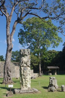 Free Copan Maya Ruins Royalty Free Stock Photos - 28578268